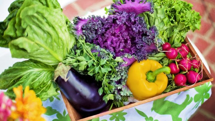 Top 3 Reasons You Should Be Growing Your Own Food