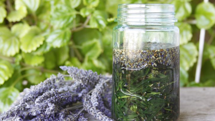 Five Ways to Preserve Herbs