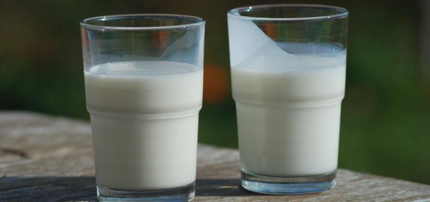 The Health Benefits of Raw Milk