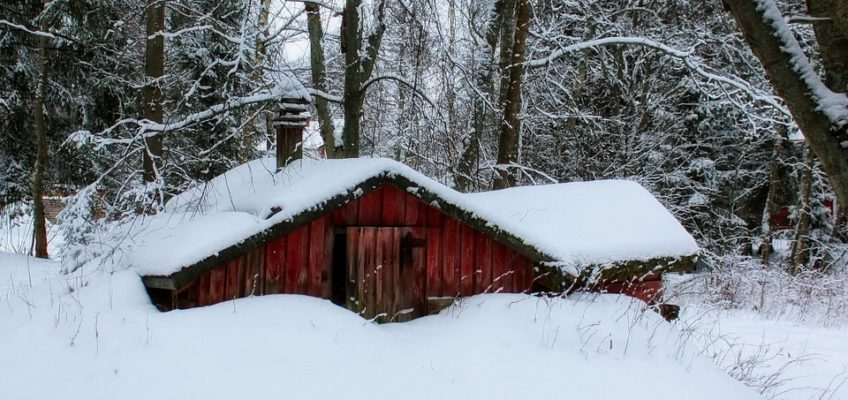 Preparing the Homestead for Winter