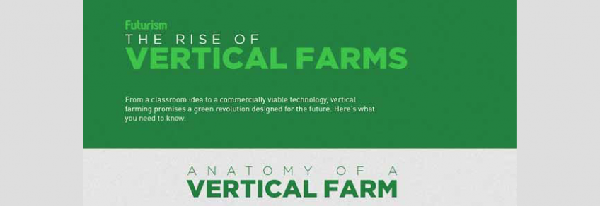 Are Vertical Farms The Future Of Agriculture?