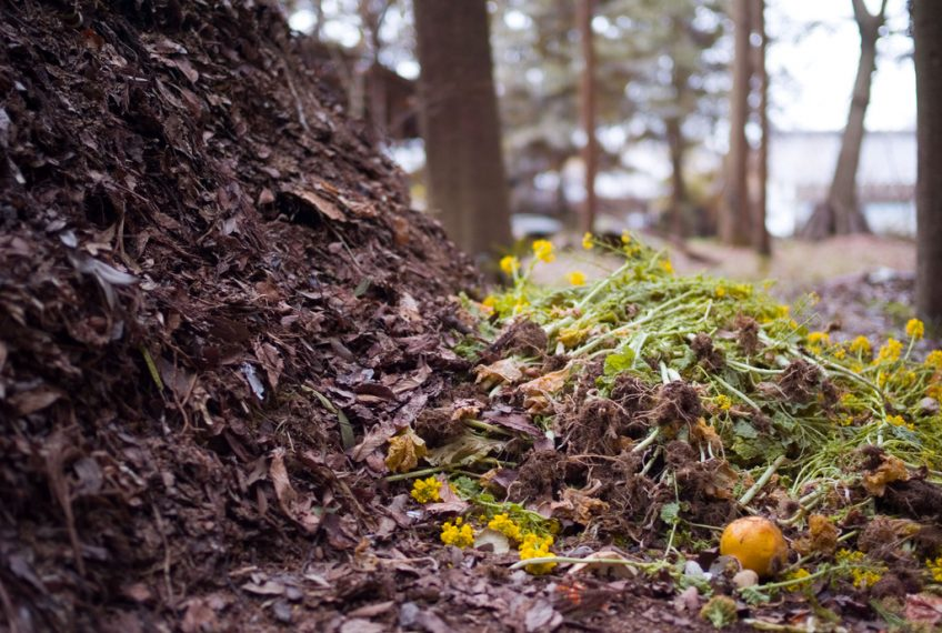 Winter Composting Tips