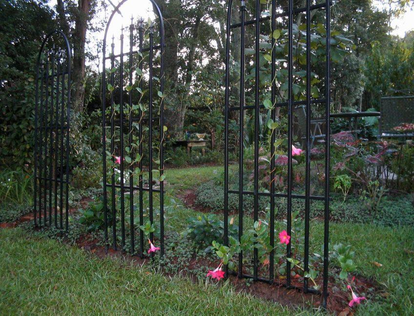 5 Space Saving Tips for Your Garden