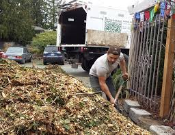 Tips to get Free Wood Chips