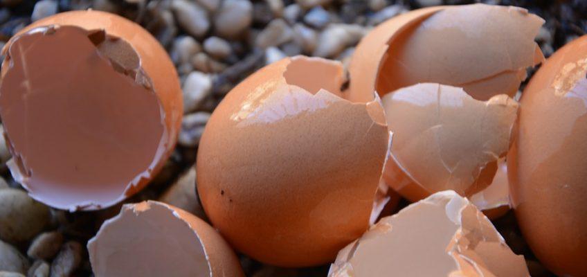 Adding Calcium to Your Garden