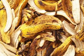 Banana Peels in the Garden