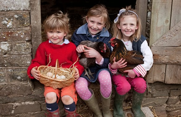 Farm Chores for Children By Age