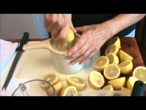 How to Freeze Lemons (Video)