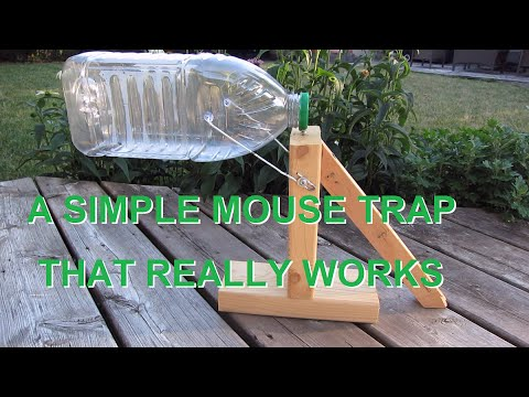 DIY Scrap Mouse Trap