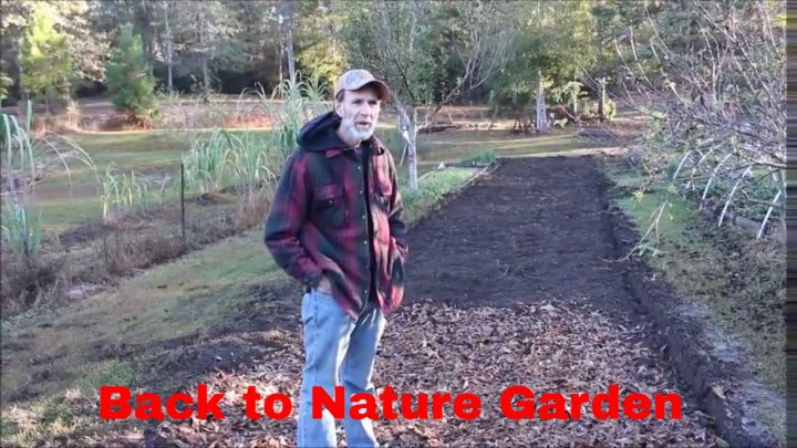 Back to Nature Garden (Video)