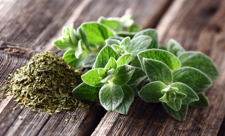 Herbs for Hens