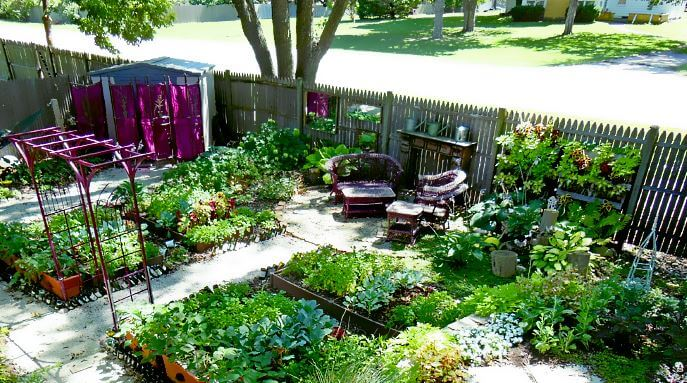 What Is Urban Homesteading?