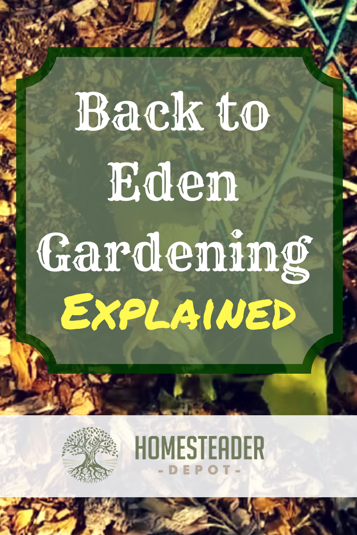 Back To Eden Gardening Explained Homesteader Depothomesteader Depot