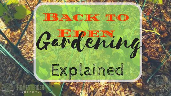 Back to Eden Gardening Explained - Homesteader DepotHomesteader Depot