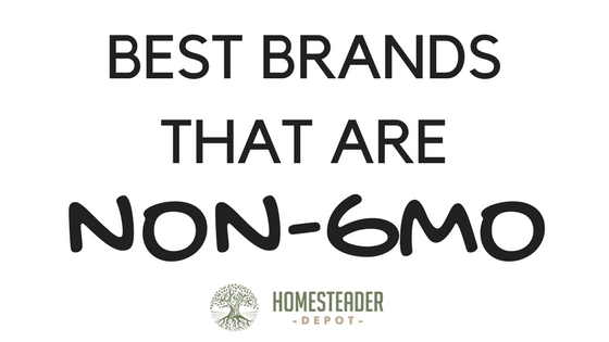 Best Brands That Are Non-GMO (Infographic)