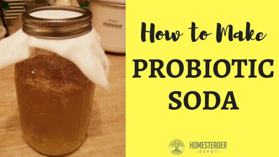 Fermented Probiotic Soda Recipe