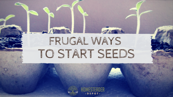 Frugal Ways to Start Seeds
