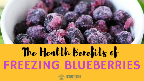 4 Health Benefits of Frozen Blueberries