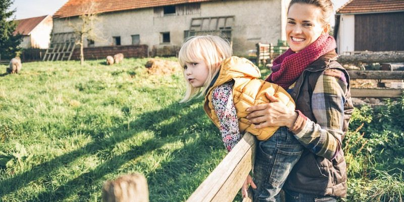 Homesteading on a Budget