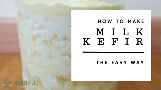 The Easy Way to Make Milk Kefir