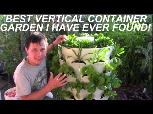 Grow 53 Plants in 4 Square Feet (Video)