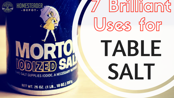 7 Brilliant Uses for Table Salt…Other Than Flavoring Food