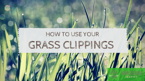 What Should You Do With Your Grass Clippings?