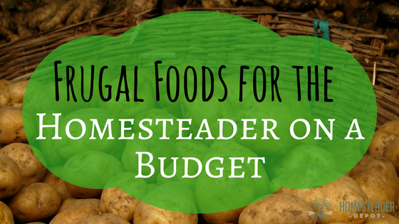Frugal Foods for the Homesteader on a Budget