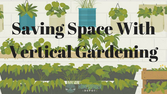 Saving Space With Vertical Gardening (Infographic)