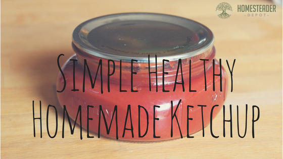Simple Healthy Homemade Ketchup