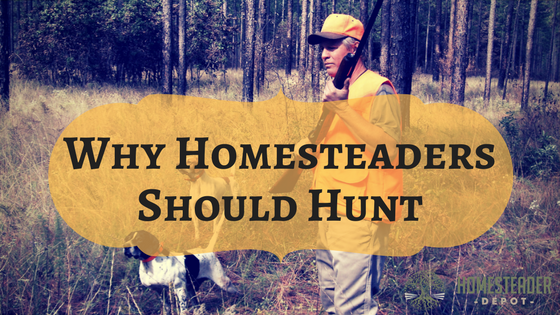 Why Should Homesteaders Hunt?
