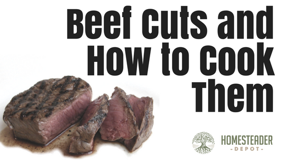 Beef Cuts and How to Cook Them (Infographic)