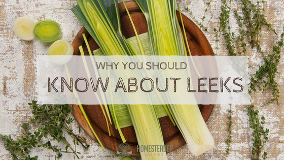 Why You Should Know About Leeks
