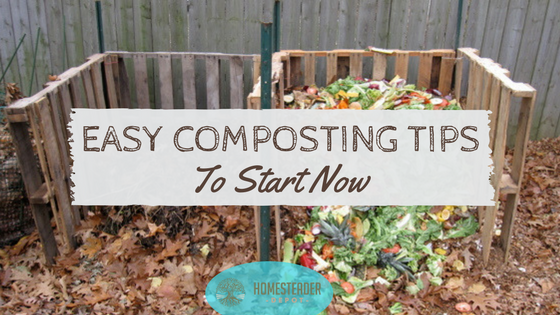 Easy Composting Tips to Start Using Now