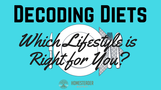 Decoding Diets: Which Lifestyle is Right for You? (Infographic)
