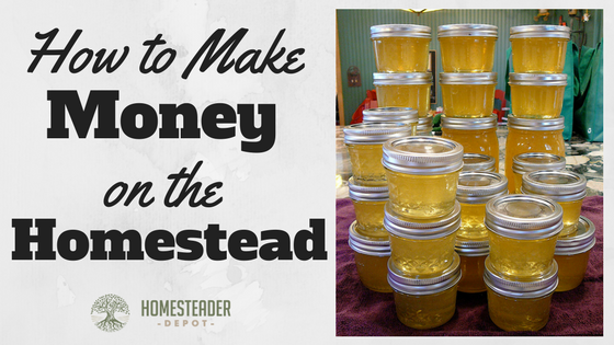 Make Money from the Homestead