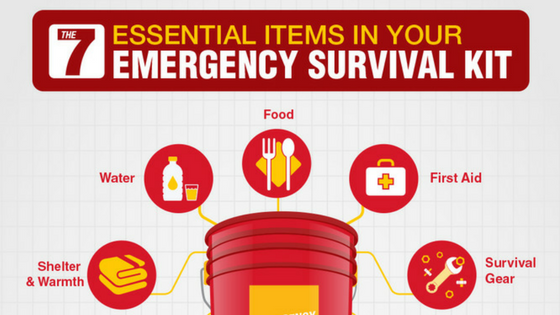 Essential Items for Your Emergency Survival Kit (Infographic)