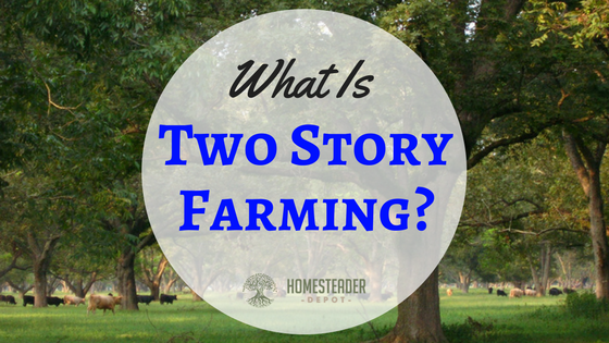 What Is Two Story Farming?