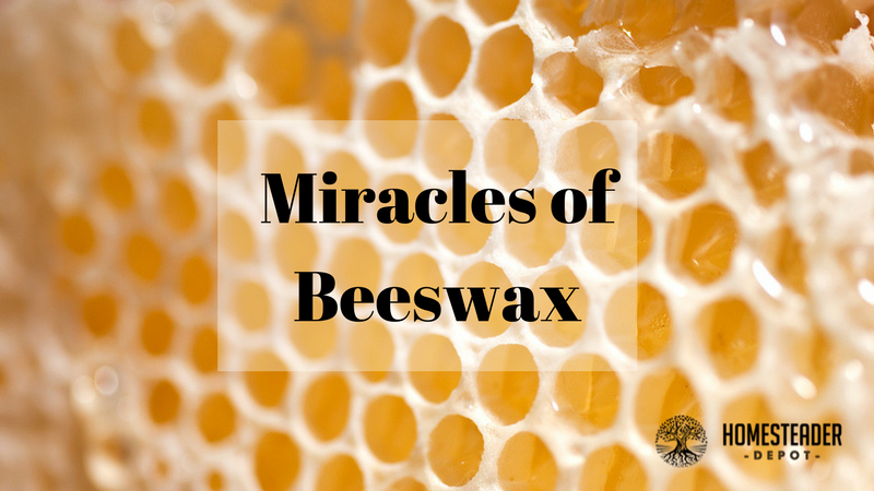 7 Unfamiliar Benefits of Beeswax