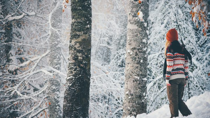 5 Simple (Yet Crucial) Guidelines of Winter Survival