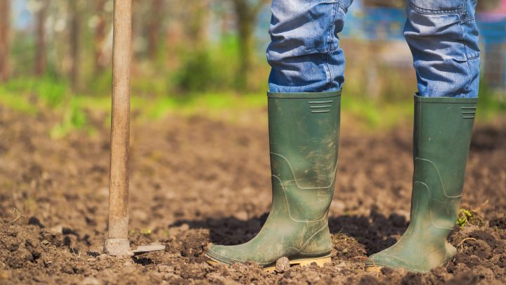 4 More Simple Ways to Improve Soil Quality