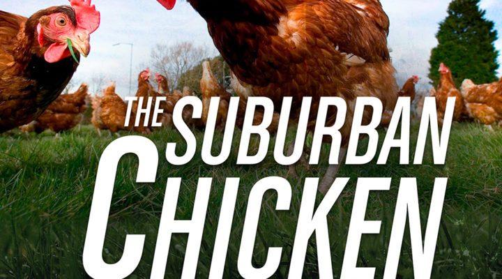 The Suburban Chicken Blueprint [eBook]