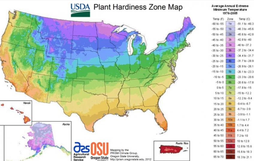 Understanding Gardening Zones