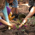 5 Easy Plants for Kids to Grow