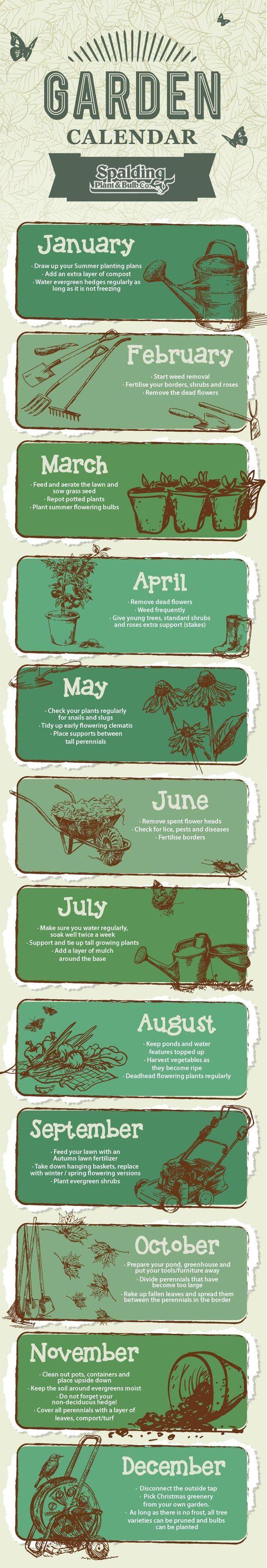 Garden Calendar (Infographic)