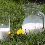 How to Safely Handle Raw Milk