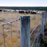 Tips for Stretching Wire Fence