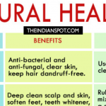 Food for Healing (Inforgraphics)
