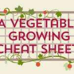 A Vegetable Growing Cheat Sheet