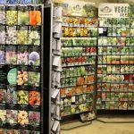 Tips for Saving Money When Purchasing Seeds